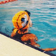 Çocuk Yüzme Dersleri
